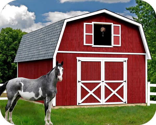 Best barns roanoke 16x24 wood storage shed kit for Loft barn kits
