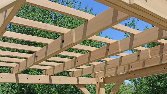 Multi-Level Roof Structure With Profiled Beams And Trellis Ends